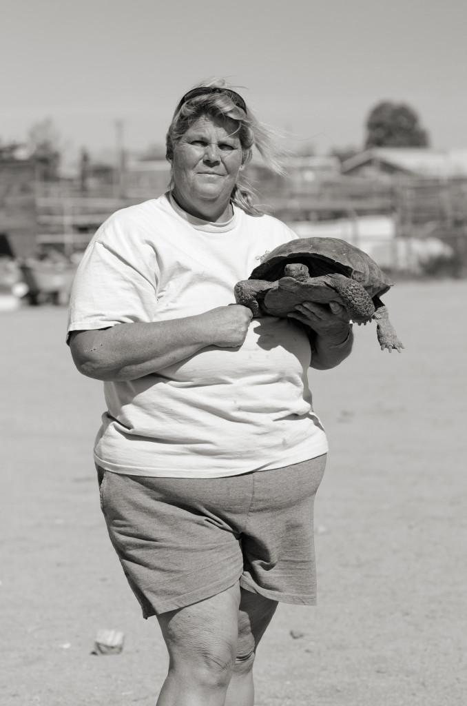 Heidi, Joshua Tree Tortoise Rescue